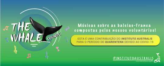 MÚSICAS para baixar: CD THE WHALE SOUNDS!