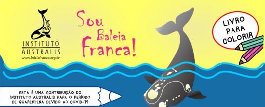 LIVRINHO PARA PINTURA – SOU BALEIA-FRANCA!